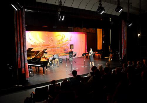 18.11.2014 - Koncert učitelů