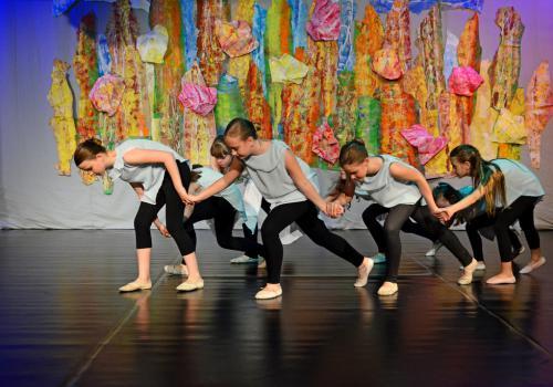 26.05.2015 - Taneční akademie